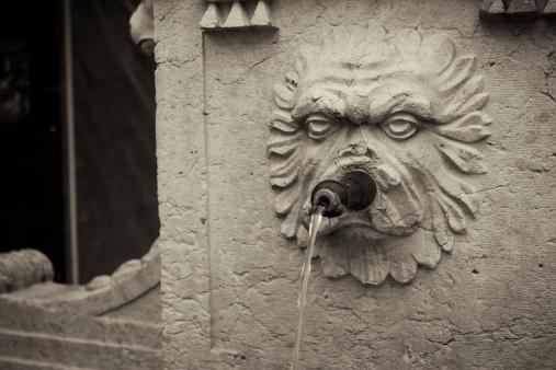 Drinking Fountain「Water fountain in Bern, Switzerland depicting face of lion. 」:スマホ壁紙(10)