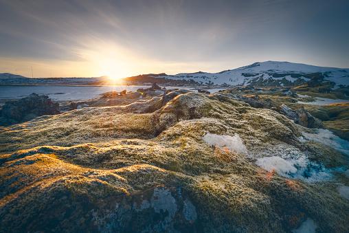 Back Lit「Iceland, Sudurland, coast in the morning」:スマホ壁紙(16)