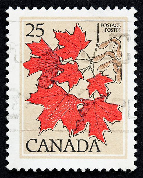 A Canadian stamp with red maple leaves:スマホ壁紙(壁紙.com)