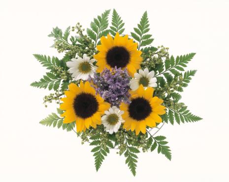 Bouquet「Sunflower Bouquet」:スマホ壁紙(7)