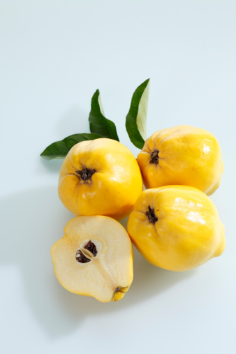Quince「Quinces on white background」:スマホ壁紙(3)