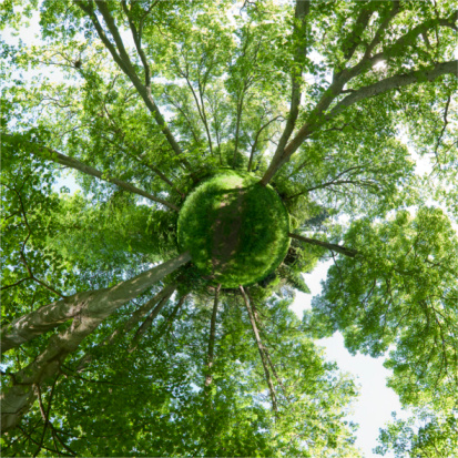 Ecosystem「Small green planet」:スマホ壁紙(15)