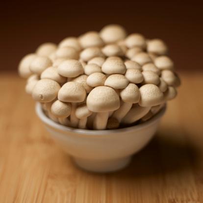 ヒラタケ「brown beech mushrooms」:スマホ壁紙(19)