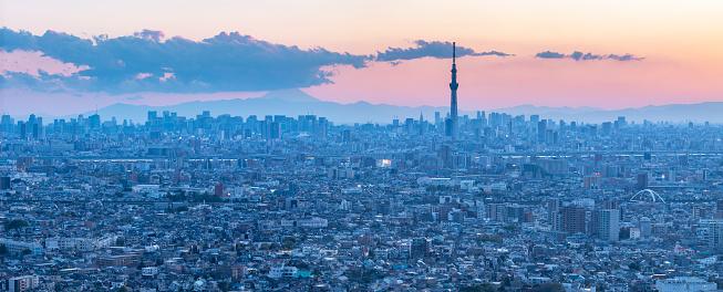 Tokyo Tower「Panoramic aerial of Tokyo Skytree overlooking crowded cityscape highways waterways Japan」:スマホ壁紙(7)