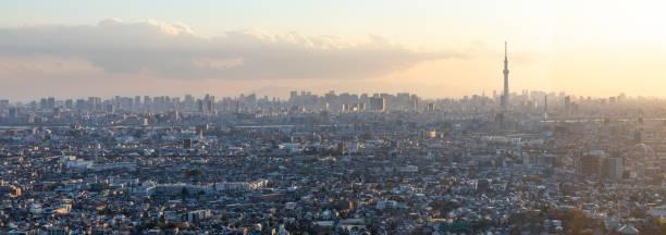 Panoramic aerial of Tokyo Skytree overlooking crowded cityscape highways waterways Japan:スマホ壁紙(壁紙.com)