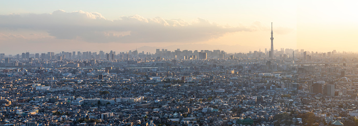 Tokyo - Japan「Panoramic aerial of Tokyo Skytree overlooking crowded cityscape highways waterways Japan」:スマホ壁紙(1)