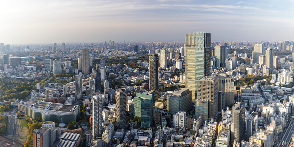 Minato Ward「Panoramic aerial of the skyscrapers and crowded cityscape of central Tokyo from Roppongi Hills, Japan's capital city.」:スマホ壁紙(18)