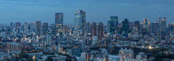 Tokyo Sky Tree「Panoramic aerial of the skyscrapers and crowded cityscape of central Tokyo, Japan's capital city.」:スマホ壁紙(9)