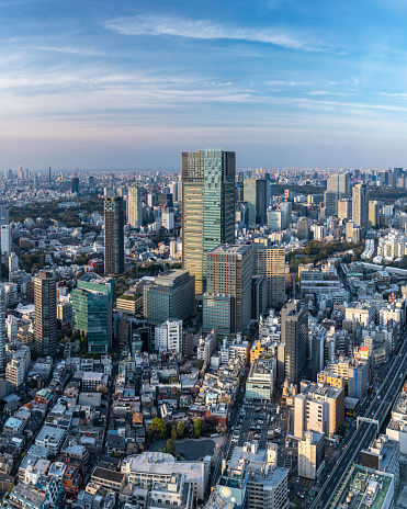 Tokyo Bay「Panoramic aerial of the skyscrapers and crowded cityscape of central Tokyo from Roppongi Hills, Japan's capital city.」:スマホ壁紙(19)