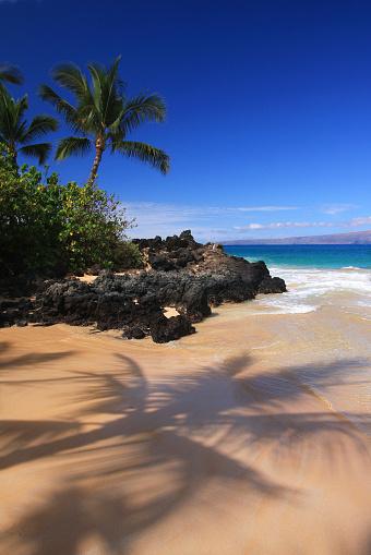 Kihei「Maui Hawaii Pacific ocean palm tree Beach scene」:スマホ壁紙(13)