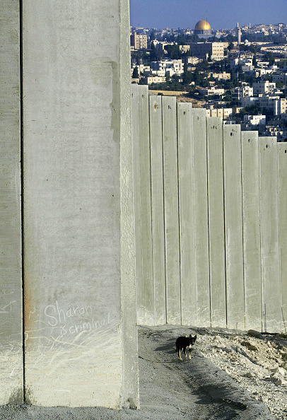 Abu Dis「Hague Court Expected To Rule Against Israel's Separation Barrier」:写真・画像(6)[壁紙.com]