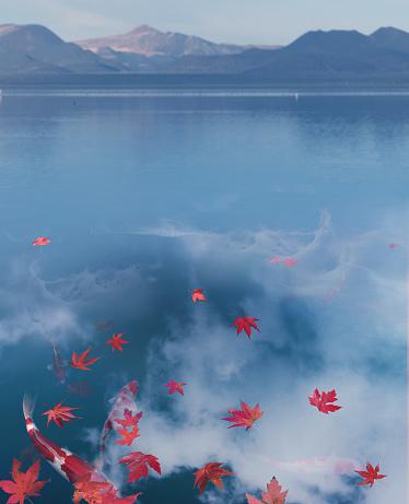 Japanese Maple「Japanese carps swim in to blue lake」:スマホ壁紙(1)