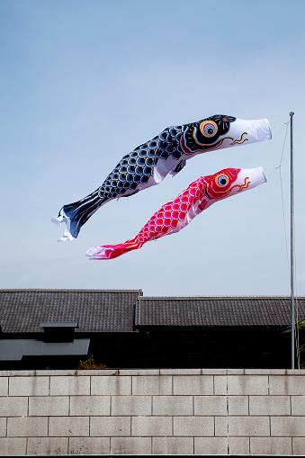 こどもの日「Japanese Carp Streamer Flying in the Blue Sky」:スマホ壁紙(11)