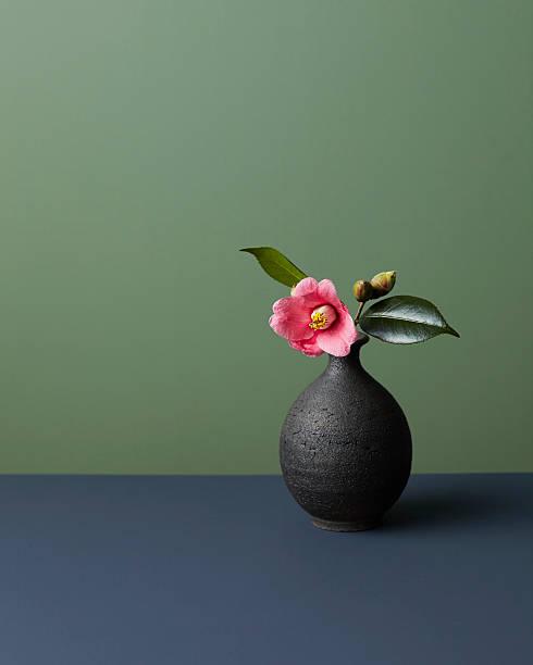 Japanese camellia:スマホ壁紙(壁紙.com)