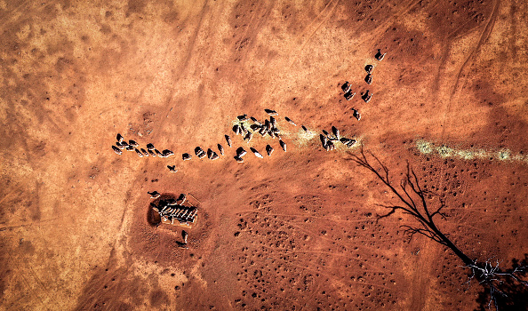 Drone Point of View「Farmers Continue To Struggle As NSW Suffers Through Worst Drought On Record」:写真・画像(7)[壁紙.com]