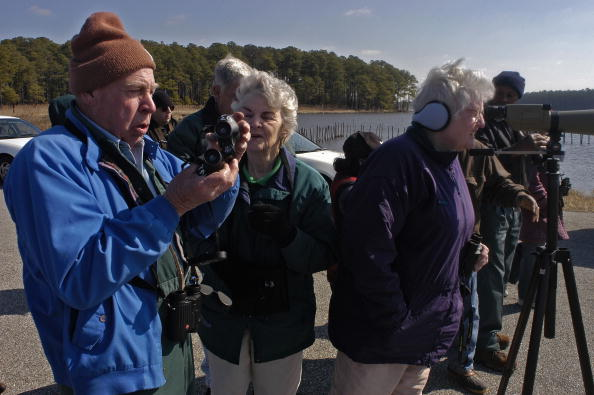 Animals Hunting「Maryland Celebrates The Return Of The Bald Eagle」:写真・画像(6)[壁紙.com]