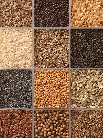 Flax Seed「Assorted seeds」:スマホ壁紙(17)