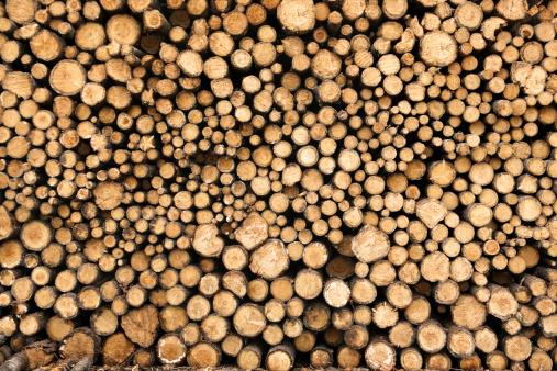 Deforestation「Lumber Yard Stack of Logs」:スマホ壁紙(0)