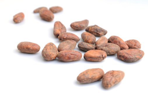Crop - Plant「Cocoa beans on white background」:スマホ壁紙(8)
