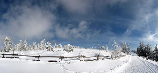 スキー「クロスカントリースキー」:スマホ壁紙(17)