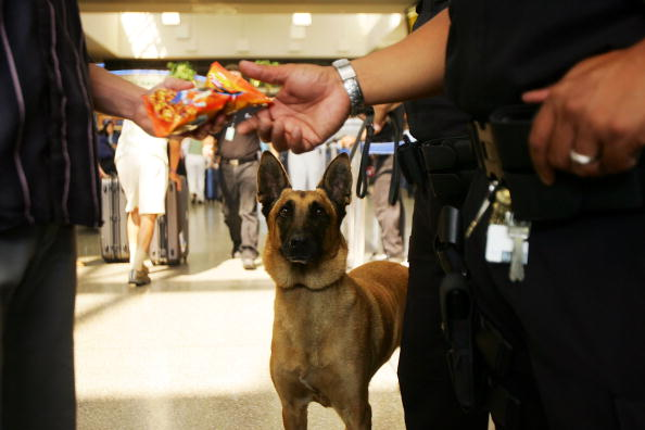 LAX Airport「U.S. Raises Air Security Alert To Red For The First Time」:写真・画像(18)[壁紙.com]