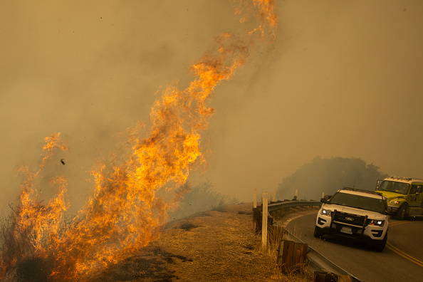 Sequoia National Forest「French Fire In California Burns Almost 15,000 Acres」:写真・画像(6)[壁紙.com]