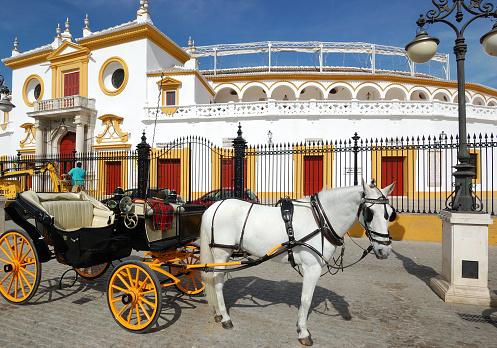 Horse-drawn carriage「正面玄関のラマエストランザ、プラザデトロス闘牛場、セビリア(スペイン)」:スマホ壁紙(12)