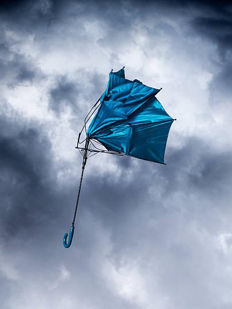 blue umbrella:スマホ壁紙(壁紙.com)