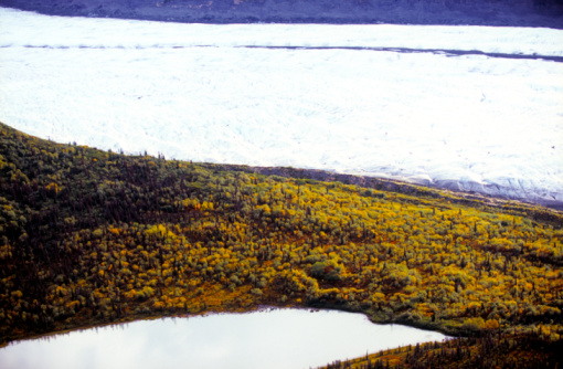 Kennicott Glacier「Autumn foliage and lake at Kennicott and Root Glaciers」:スマホ壁紙(17)