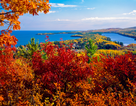 Great Lakes「autumn foliage color at Copper Harbor Michigan, overlooking Lake Superior」:スマホ壁紙(15)