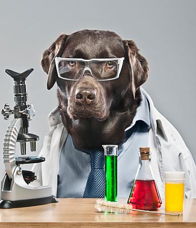 Scientist「The Lab Technician」:スマホ壁紙(7)