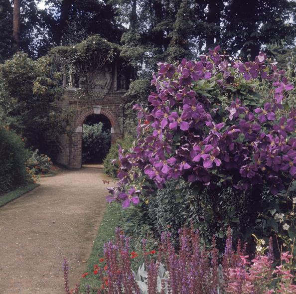 Flowerbed「Old Garden」:写真・画像(3)[壁紙.com]