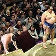 琴奨菊 和弘壁紙の画像(壁紙.com)