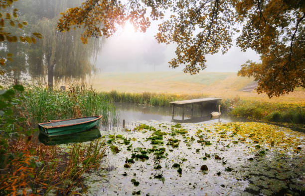 Boat moored on a river in the mist, France:スマホ壁紙(壁紙.com)