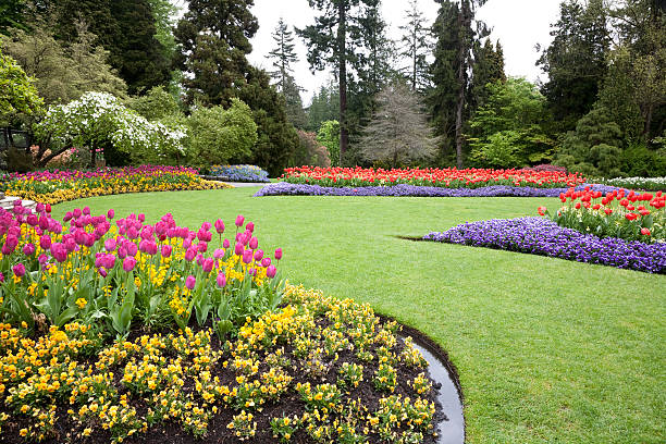 A beautiful landscaped garden of flowers:スマホ壁紙(壁紙.com)