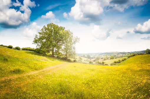 Rolling Landscape「Beautiful Landscape View In Gloucestershire, England」:スマホ壁紙(17)