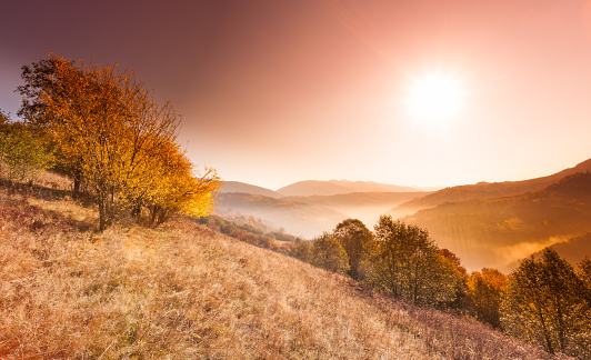Carpathian Mountain Range「Beautiful landscape with hills and mountais」:スマホ壁紙(13)