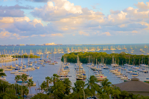 Grove「Pleasure boats, Biscayne Bay, Coconut Grove, FL」:スマホ壁紙(12)