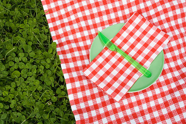 Red, checked tablecloth on grass:スマホ壁紙(壁紙.com)