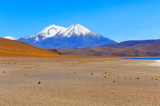 Bolivian Andes「Snowcapped Volcano and Atacama Desert altiplano, volcanic landscape, Chile」:スマホ壁紙(7)
