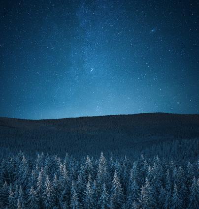 Scenics - Nature「Snowcapped Forest Under The Stars」:スマホ壁紙(4)