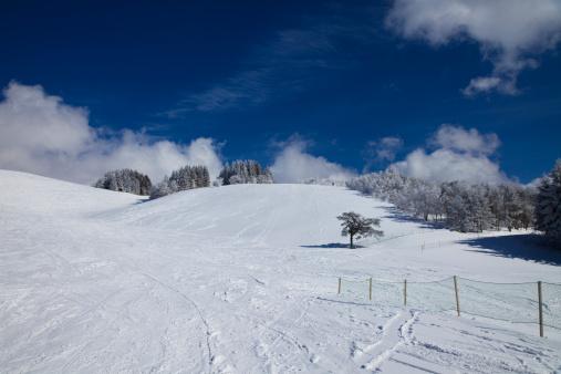 Ski Track「Snowcapped mountain」:スマホ壁紙(15)