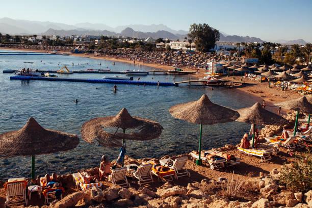 Tourism In Popular Egyptian Holiday Destination Sharm El Sheik:ニュース(壁紙.com)