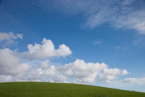 Rolling「Rolling green hill under blue sky」:スマホ壁紙(15)