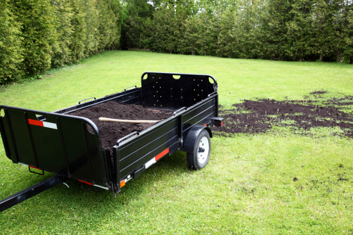 Planting「Topdressing Lawn」:スマホ壁紙(6)