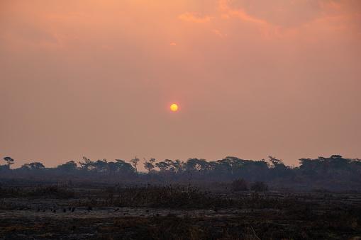 Deforestation「Sunset during a smokey wildfire, Brazil」:スマホ壁紙(4)
