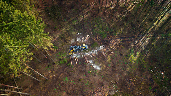 Earth Mover「Tree felling works - storm damage, aerial view」:スマホ壁紙(1)
