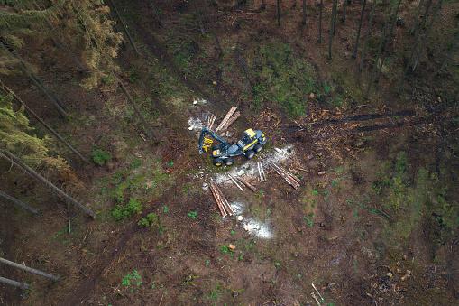Deforestation「Tree felling works - storm damage, aerial view」:スマホ壁紙(6)