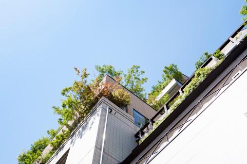 Rooftop「a rooftop garden of the office building」:スマホ壁紙(10)