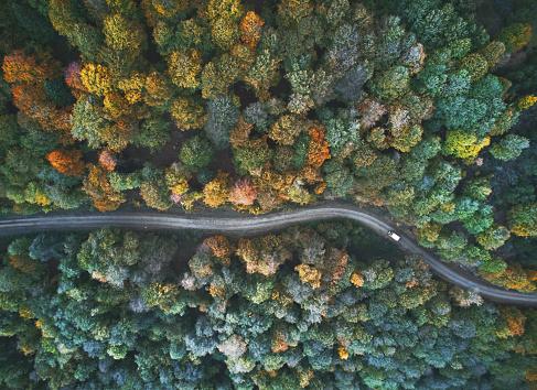 秋「上から秋のビュー」:スマホ壁紙(10)